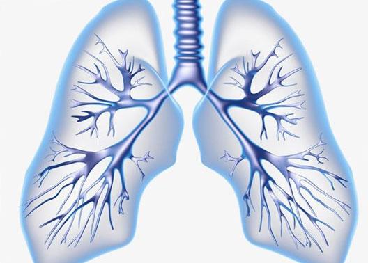 Broncoscopia diagnóstica e intubación difícil